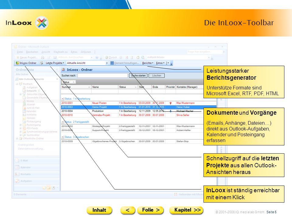 Die InLoox-Toolbar Leistungsstarker Berichtsgenerator