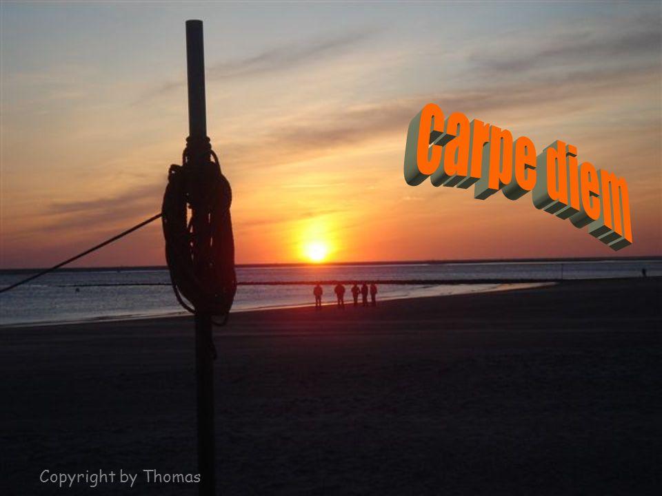 carpe diem Copyright by Thomas