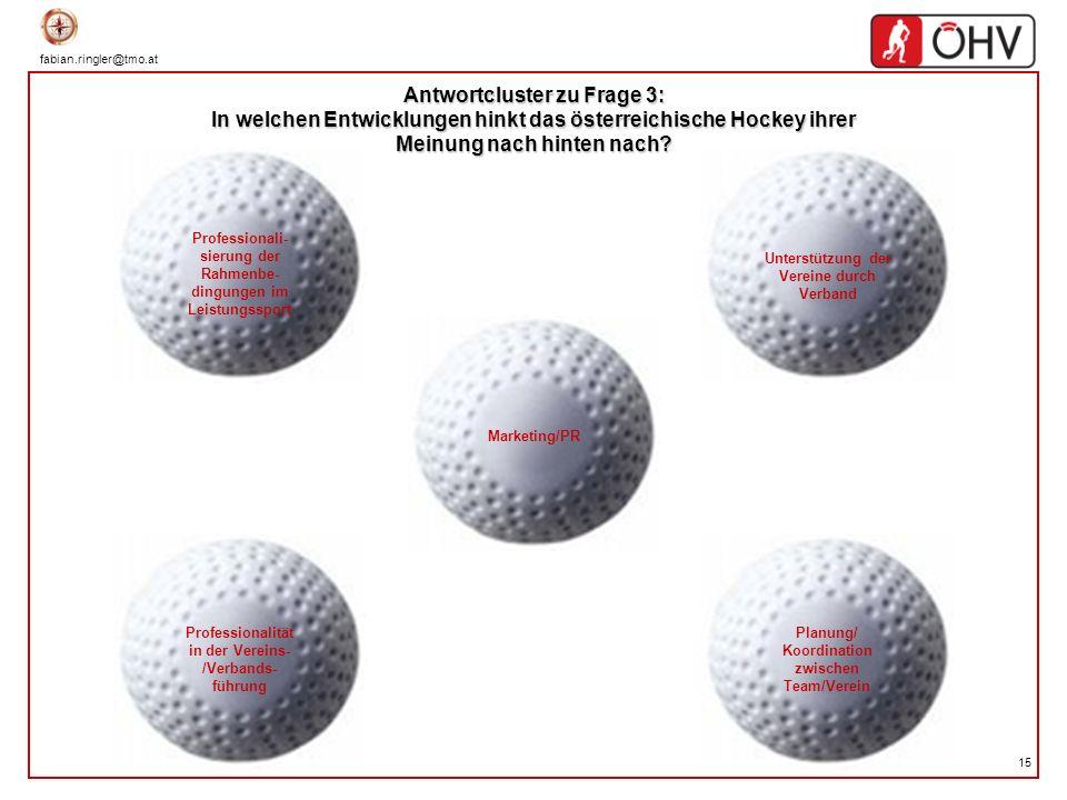 Antwortcluster zu Frage 3: In welchen Entwicklungen hinkt das österreichische Hockey ihrer Meinung nach hinten nach