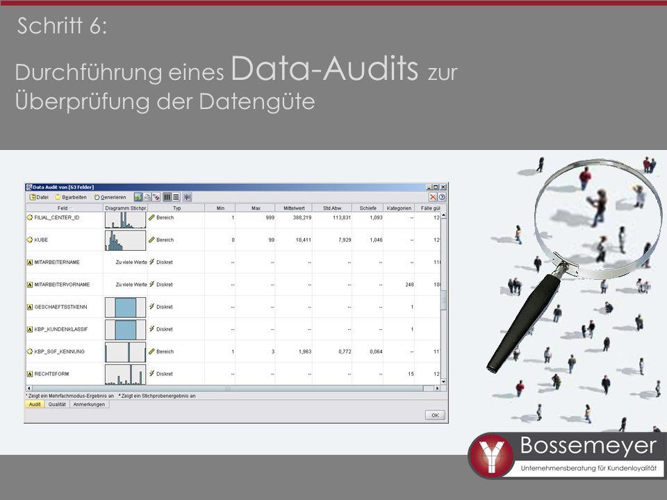 Durchführung eines Data-Audits zur Überprüfung der Datengüte