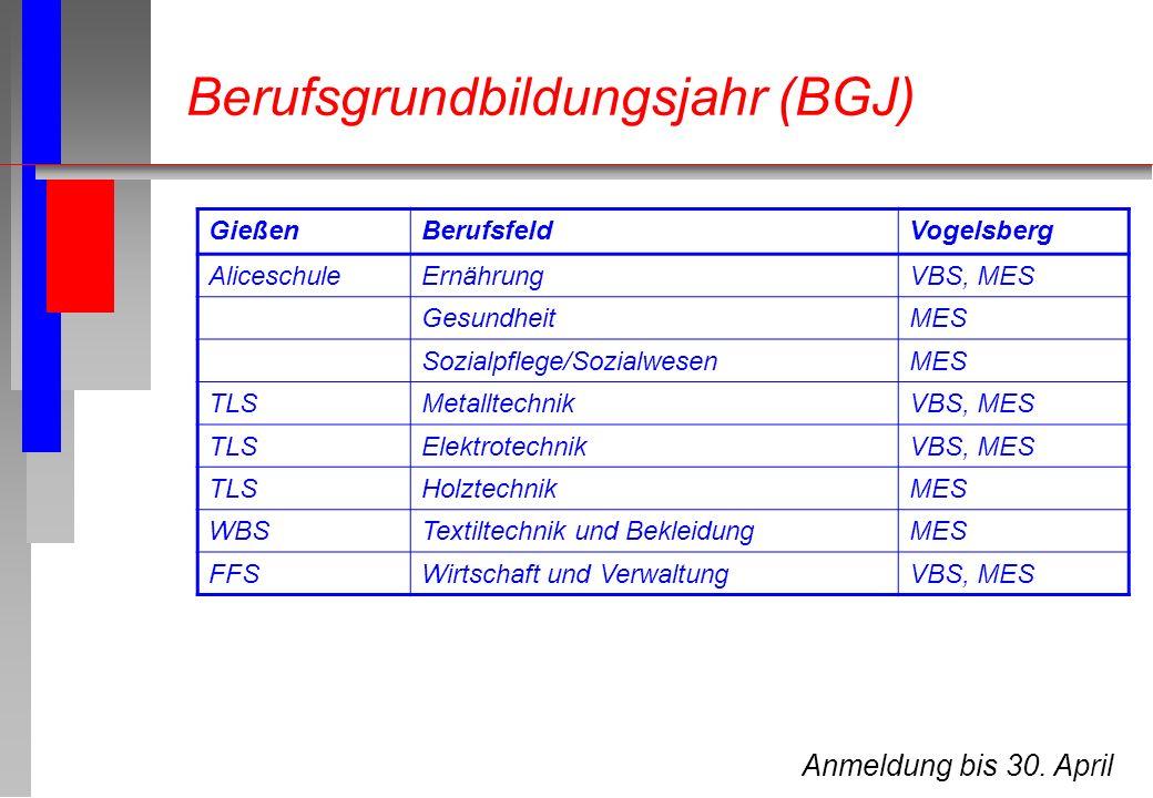 Berufsgrundbildungsjahr (BGJ)