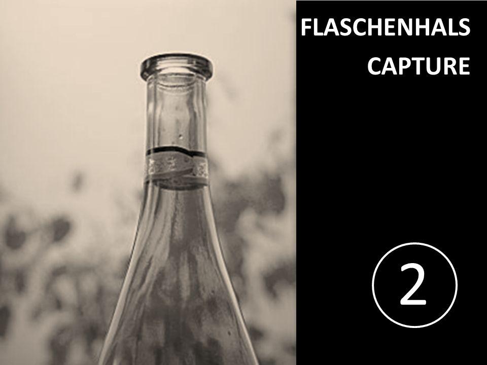 2 FLASCHENHALS CAPTURE PROJECT CONSULT Unternehmensberatung