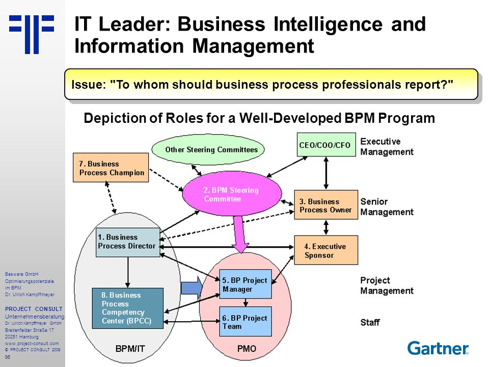 IT Leader: Business Intelligence and Information Management