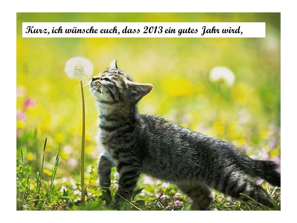 Kurz, ich wünsche euch, dass 2013 ein gutes Jahr wird,
