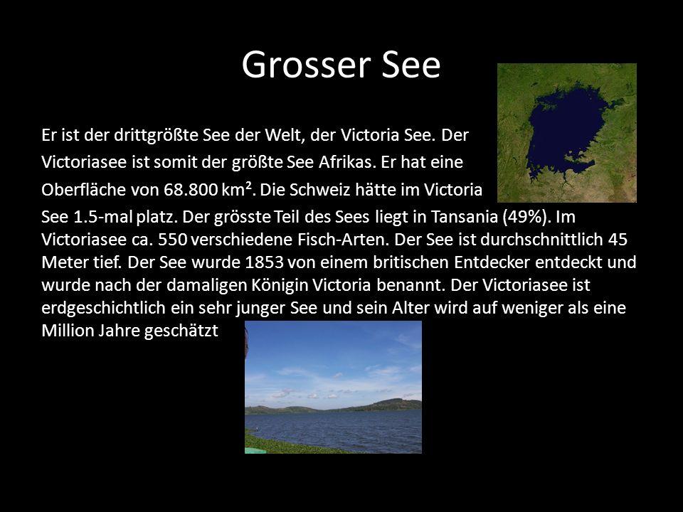 Grosser See