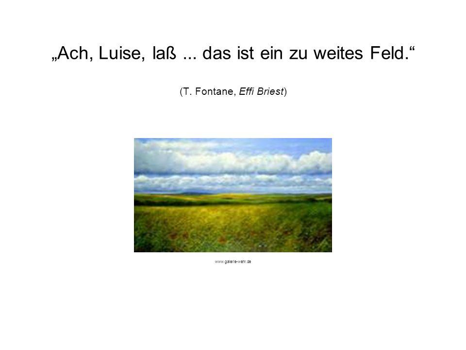 """""""Ach, Luise, laß. das ist ein zu weites Feld. (T"""