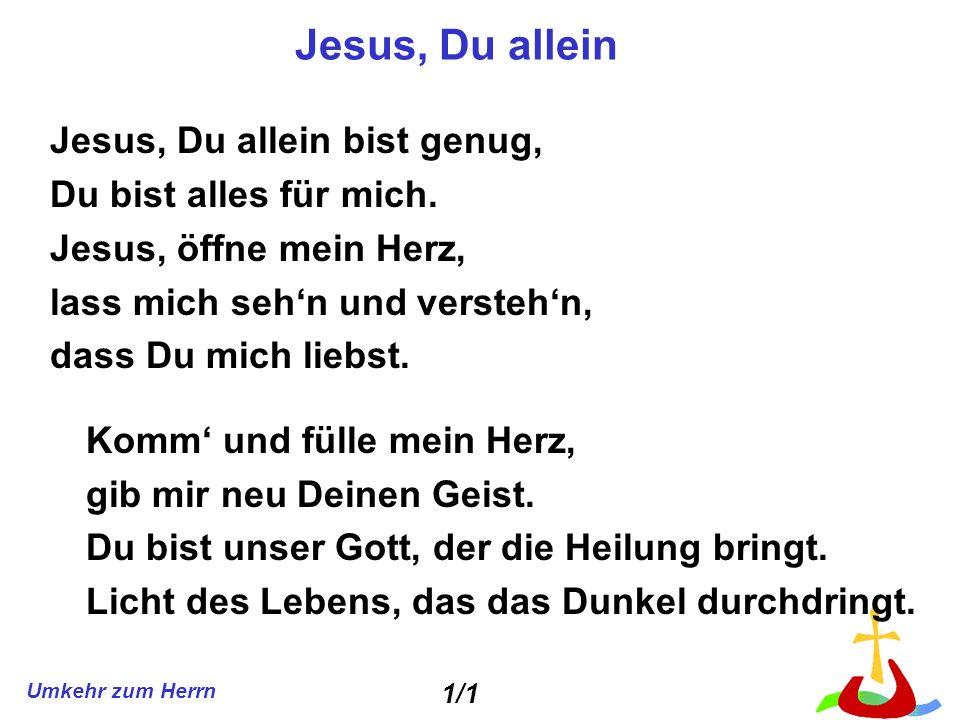Jesus, Du allein Jesus, Du allein bist genug, Du bist alles für mich.