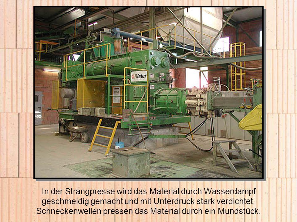 In der Strangpresse wird das Material durch Wasserdampf geschmeidig gemacht und mit Unterdruck stark verdichtet.