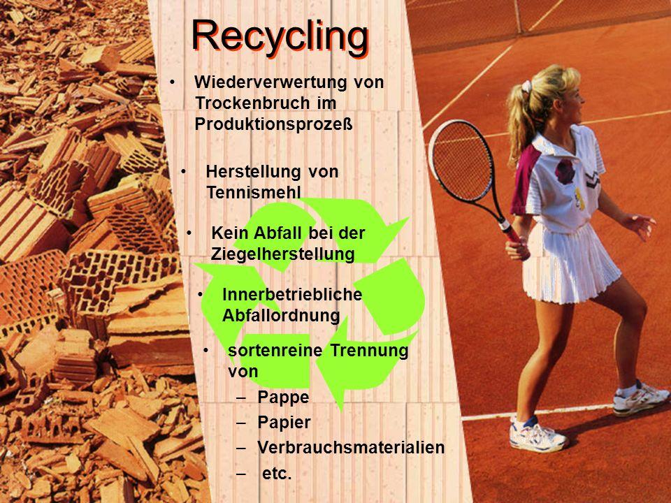 Recycling Wiederverwertung von Trockenbruch im Produktionsprozeß