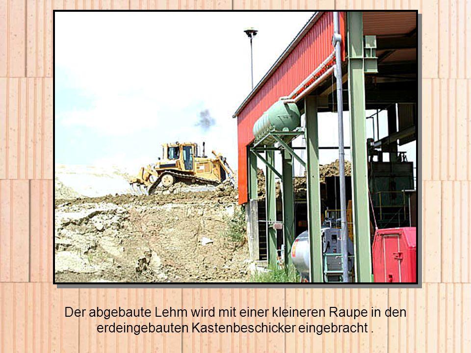Der abgebaute Lehm wird mit einer kleineren Raupe in den erdeingebauten Kastenbeschicker eingebracht .