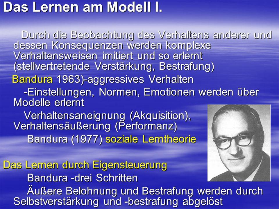 Das Lernen am Modell I.