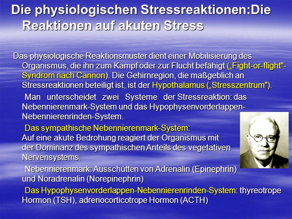 Die physiologischen Stressreaktionen:Die Reaktionen auf akuten Stress