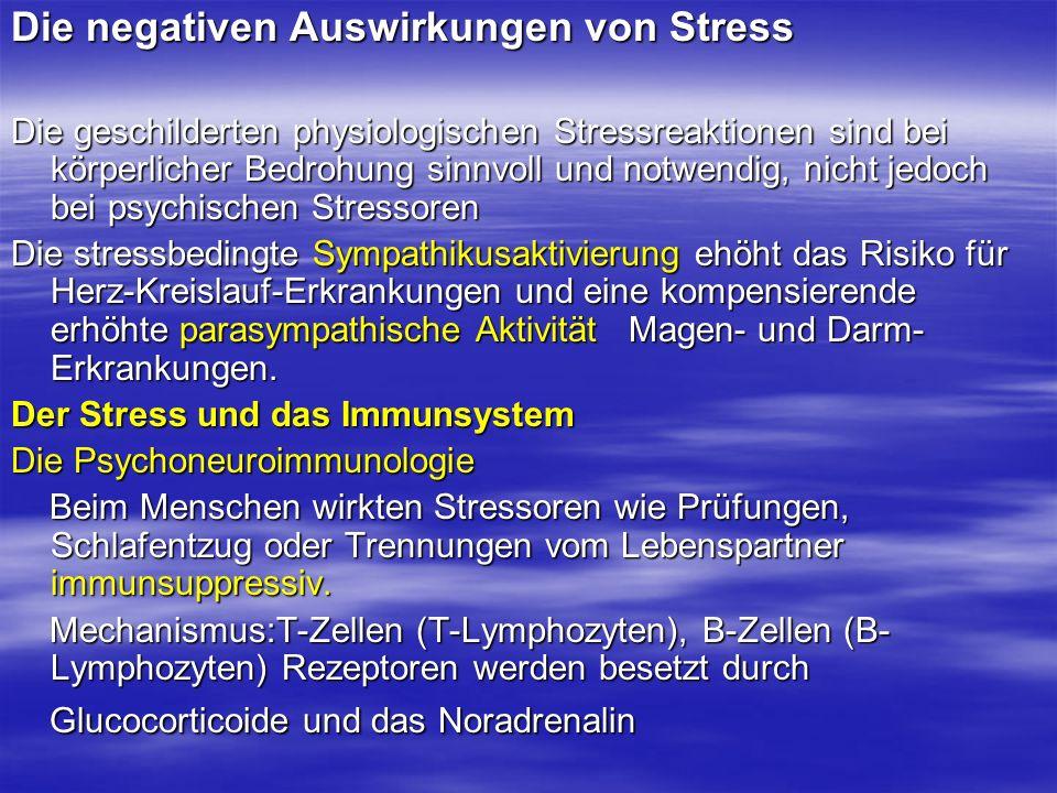 Die negativen Auswirkungen von Stress