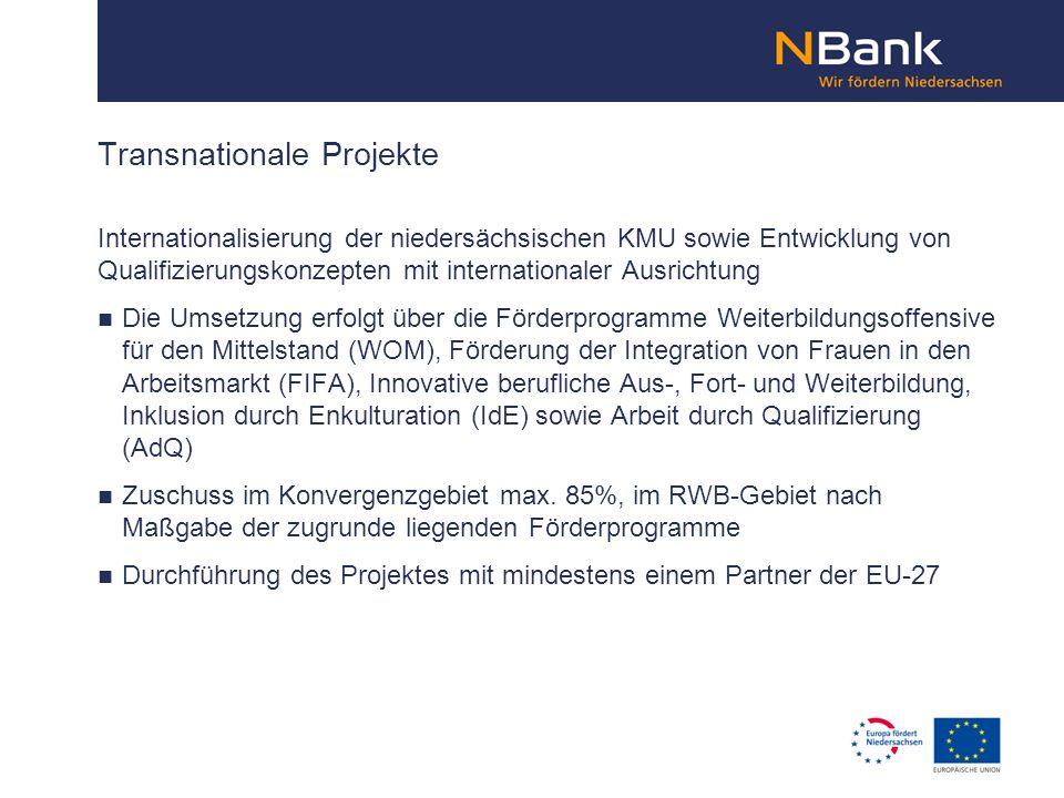 Transnationale Projekte