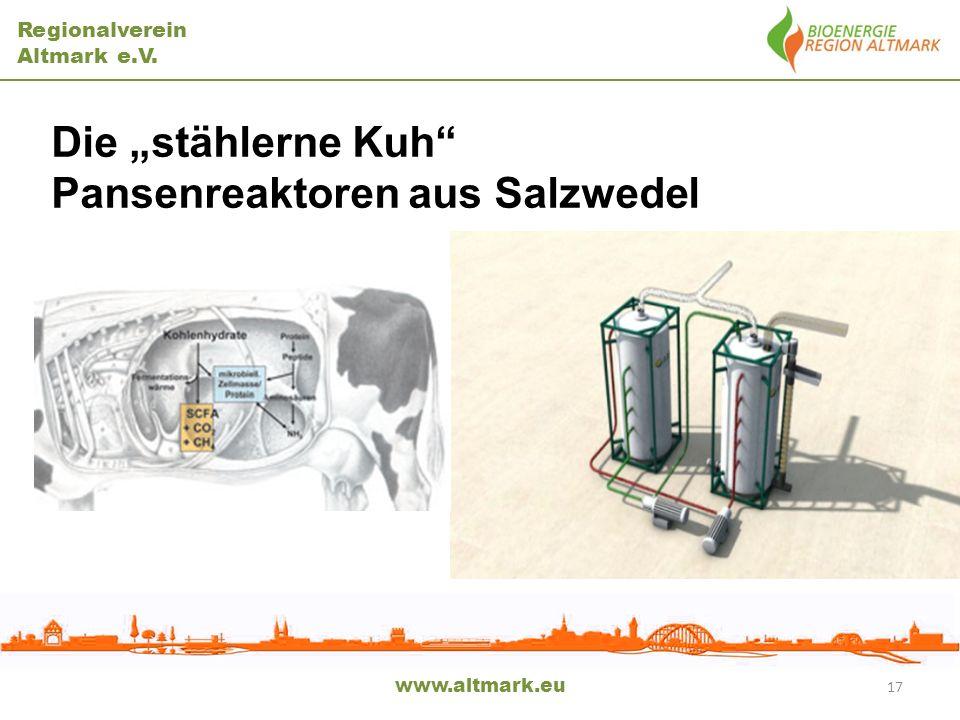 Pansenreaktoren aus Salzwedel