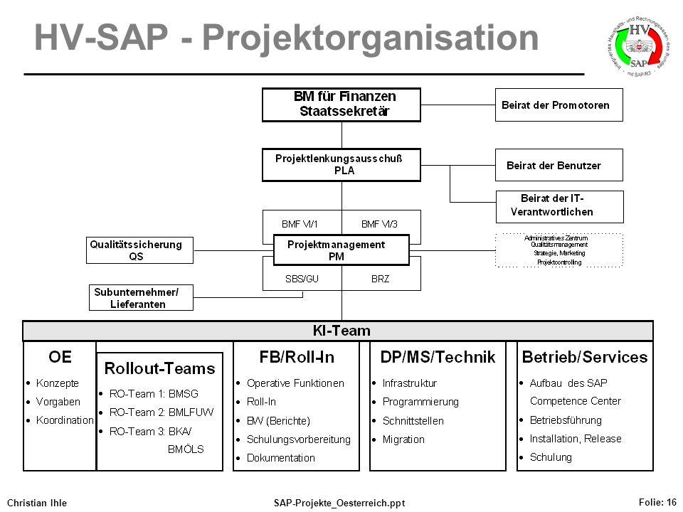 HV-SAP - Projektorganisation