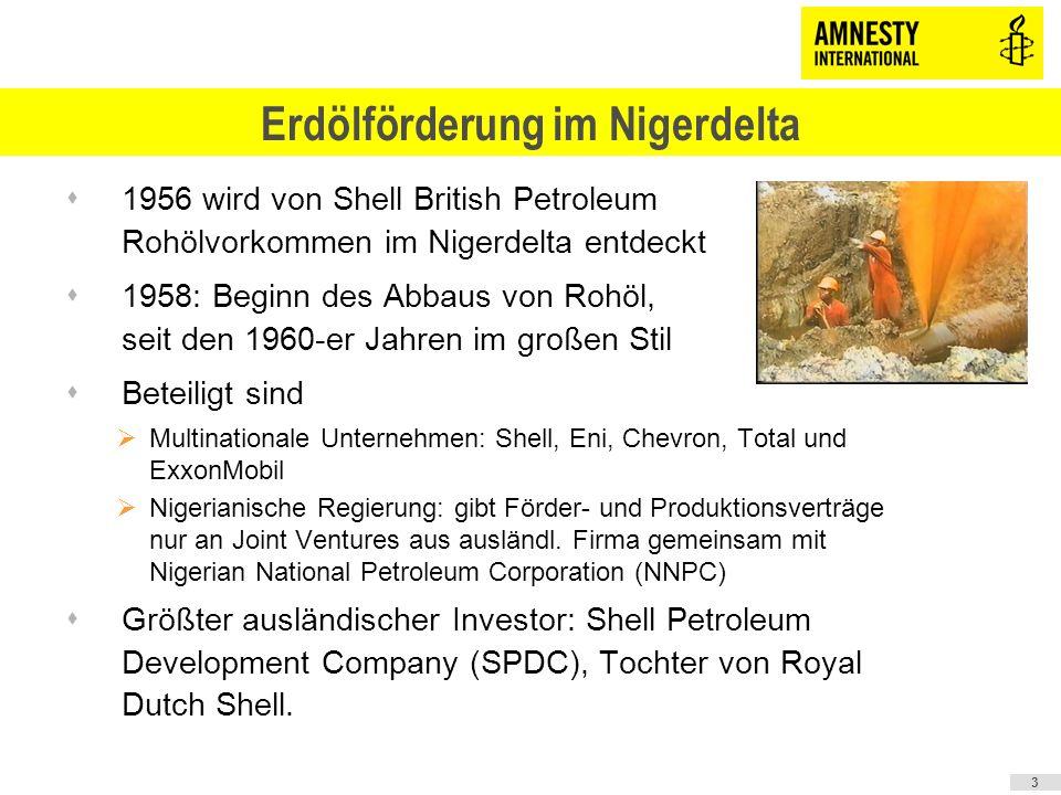 Erdölförderung im Nigerdelta