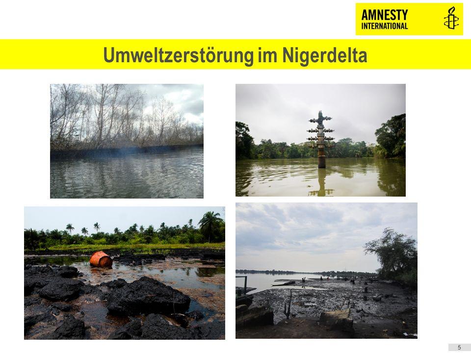 Umweltzerstörung im Nigerdelta