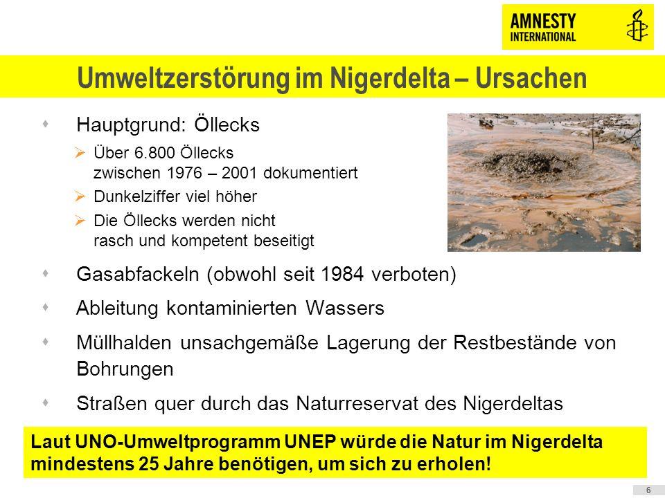 Umweltzerstörung im Nigerdelta – Ursachen