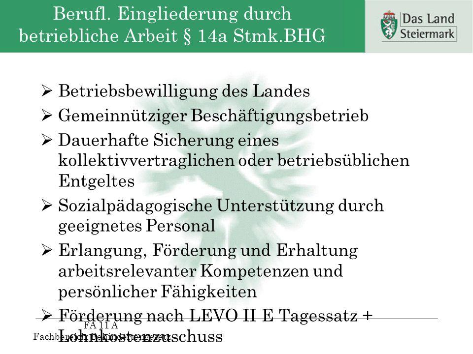 Berufl. Eingliederung durch betriebliche Arbeit § 14a Stmk.BHG