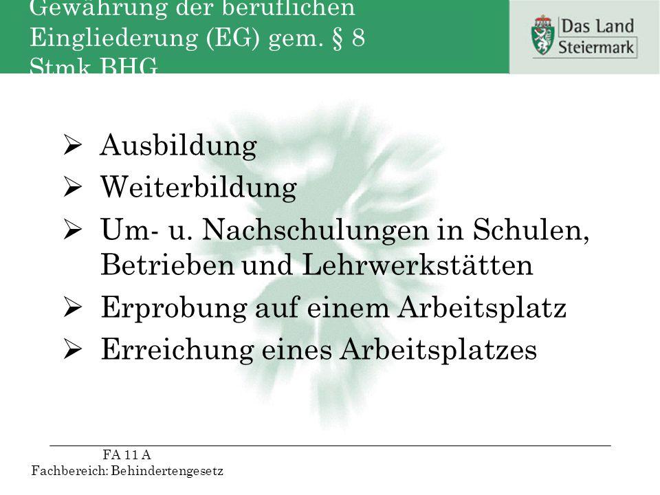 Gewährung der beruflichen Eingliederung (EG) gem. § 8 Stmk.BHG