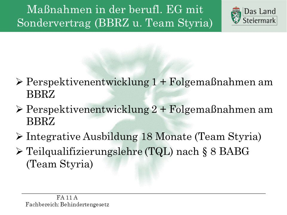 Maßnahmen in der berufl. EG mit Sondervertrag (BBRZ u. Team Styria)