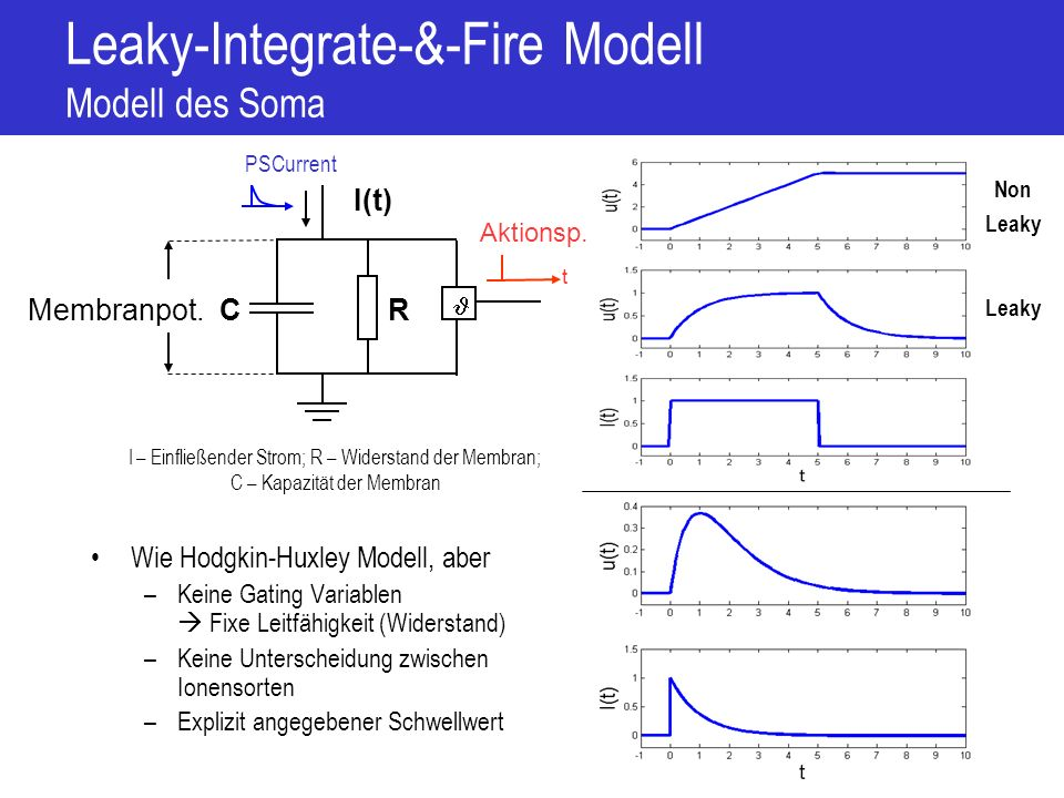 Leaky-Integrate-&-Fire Modell Modell des Soma