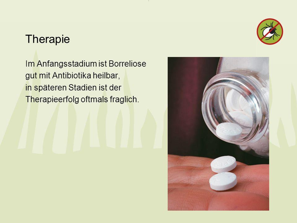 Therapie Im Anfangsstadium ist Borreliose gut mit Antibiotika heilbar,