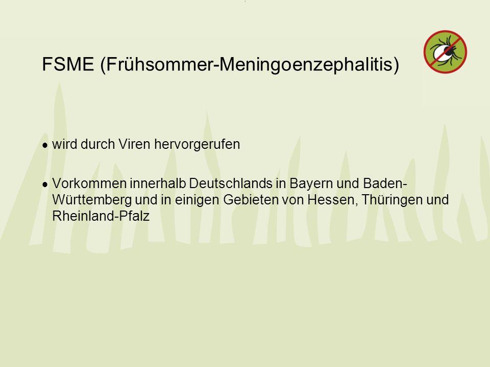 FSME (Frühsommer-Meningoenzephalitis)