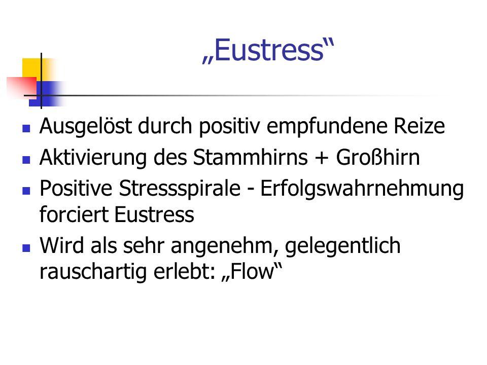 """""""Eustress Ausgelöst durch positiv empfundene Reize"""