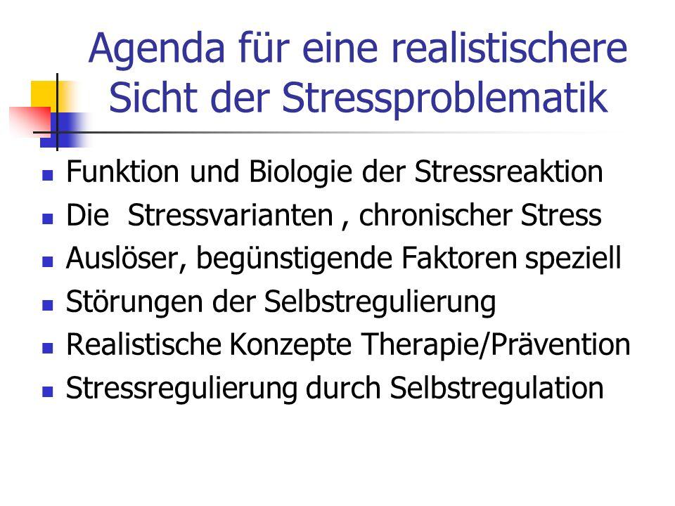 Agenda für eine realistischere Sicht der Stressproblematik