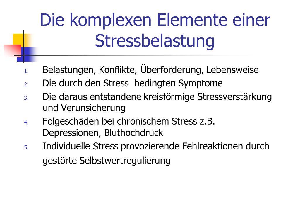 Die komplexen Elemente einer Stressbelastung