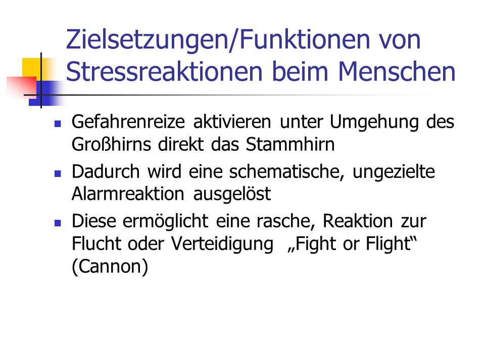 Zielsetzungen/Funktionen von Stressreaktionen beim Menschen