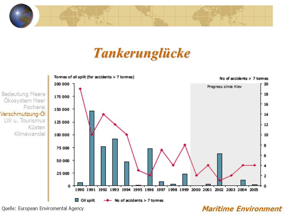 Tankerunglücke Maritime Environment Bedeutung Meere Ökosystem Meer