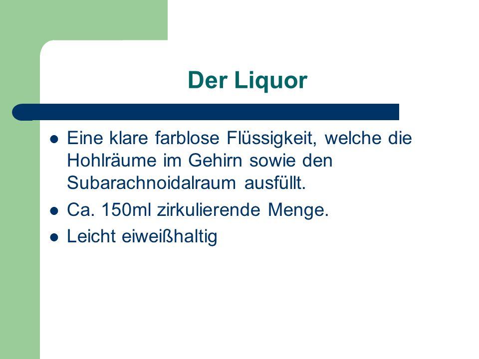Der Liquor Eine klare farblose Flüssigkeit, welche die Hohlräume im Gehirn sowie den Subarachnoidalraum ausfüllt.