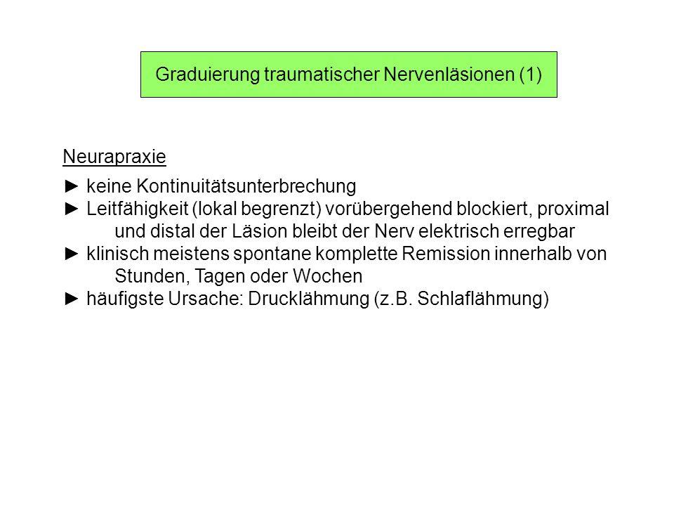 Graduierung traumatischer Nervenläsionen (1)