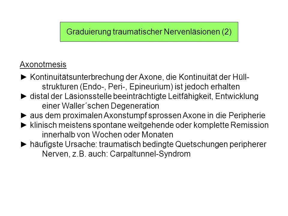 Graduierung traumatischer Nervenläsionen (2)