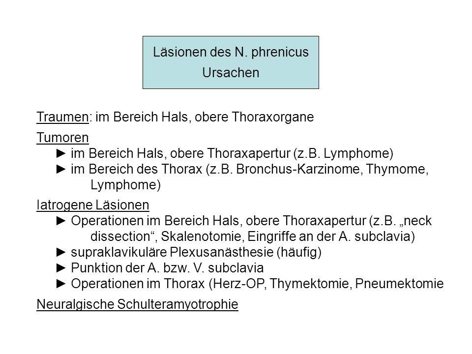 Läsionen des N. phrenicus