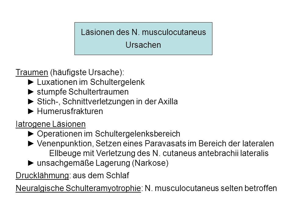 Läsionen des N. musculocutaneus
