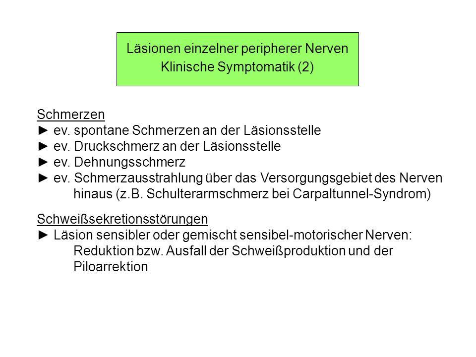 Läsionen einzelner peripherer Nerven Klinische Symptomatik (2)