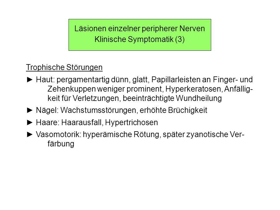 Läsionen einzelner peripherer Nerven Klinische Symptomatik (3)