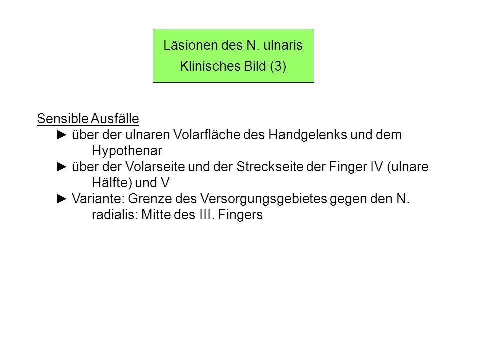 Läsionen des N. ulnaris Klinisches Bild (3) Sensible Ausfälle. ► über der ulnaren Volarfläche des Handgelenks und dem.