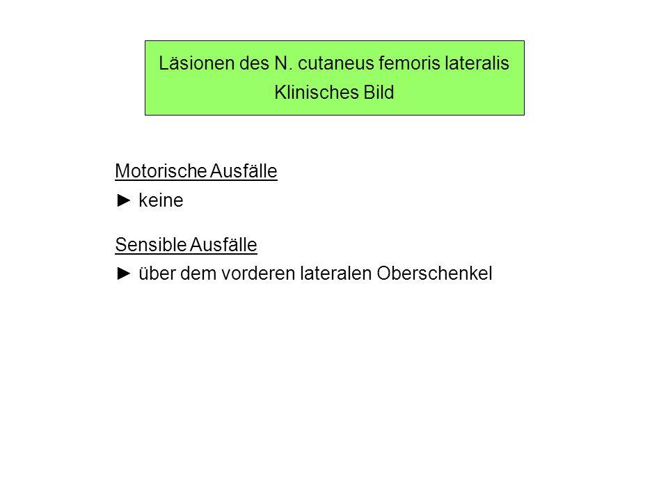 Läsionen des N. cutaneus femoris lateralis