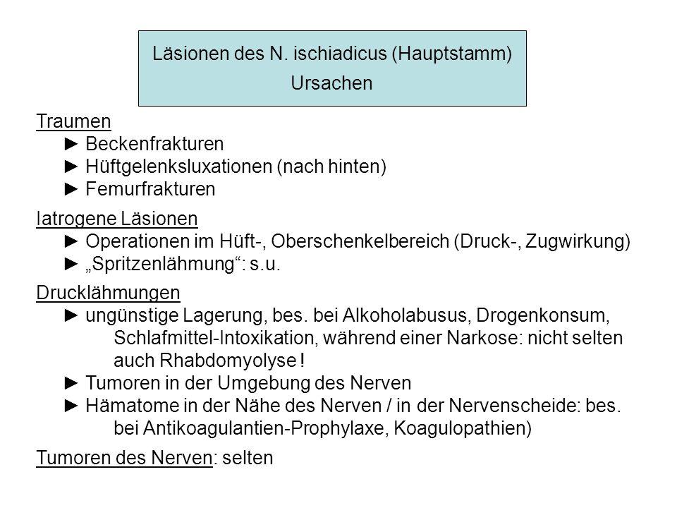 Läsionen des N. ischiadicus (Hauptstamm)
