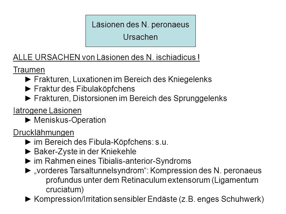 Läsionen des N. peronaeus