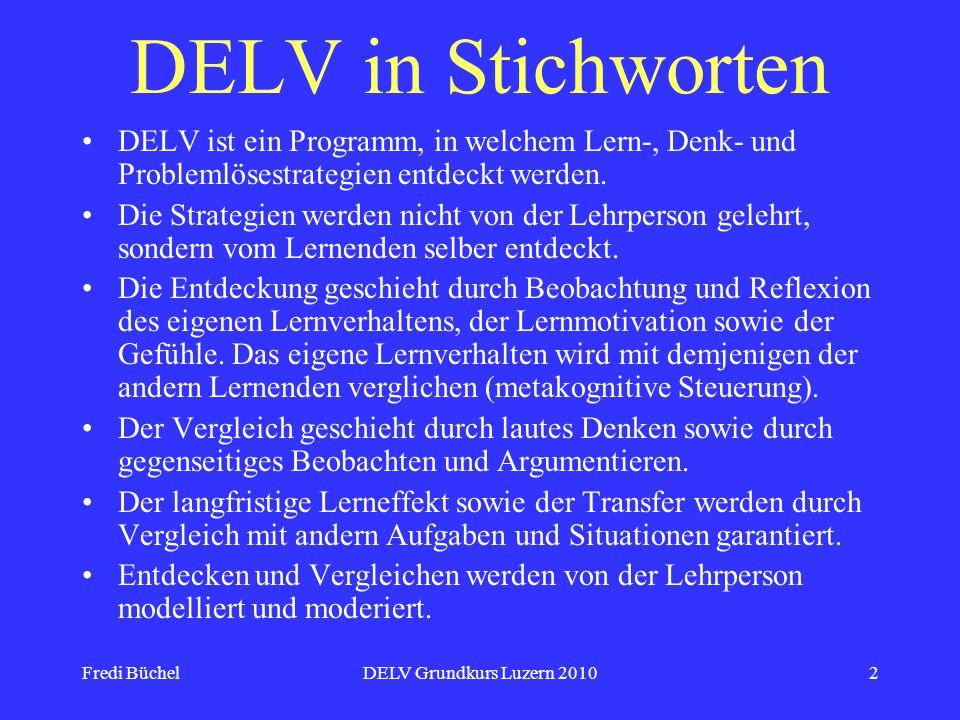 DELV in Stichworten DELV ist ein Programm, in welchem Lern-, Denk- und Problemlösestrategien entdeckt werden.