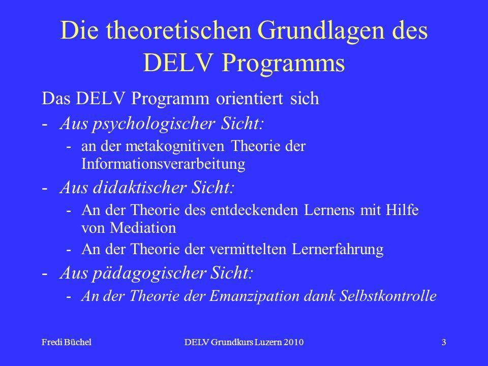 Die theoretischen Grundlagen des DELV Programms
