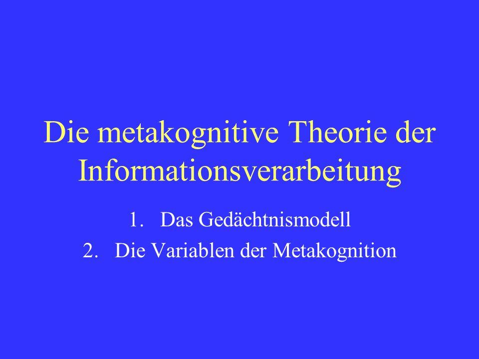 Die metakognitive Theorie der Informationsverarbeitung
