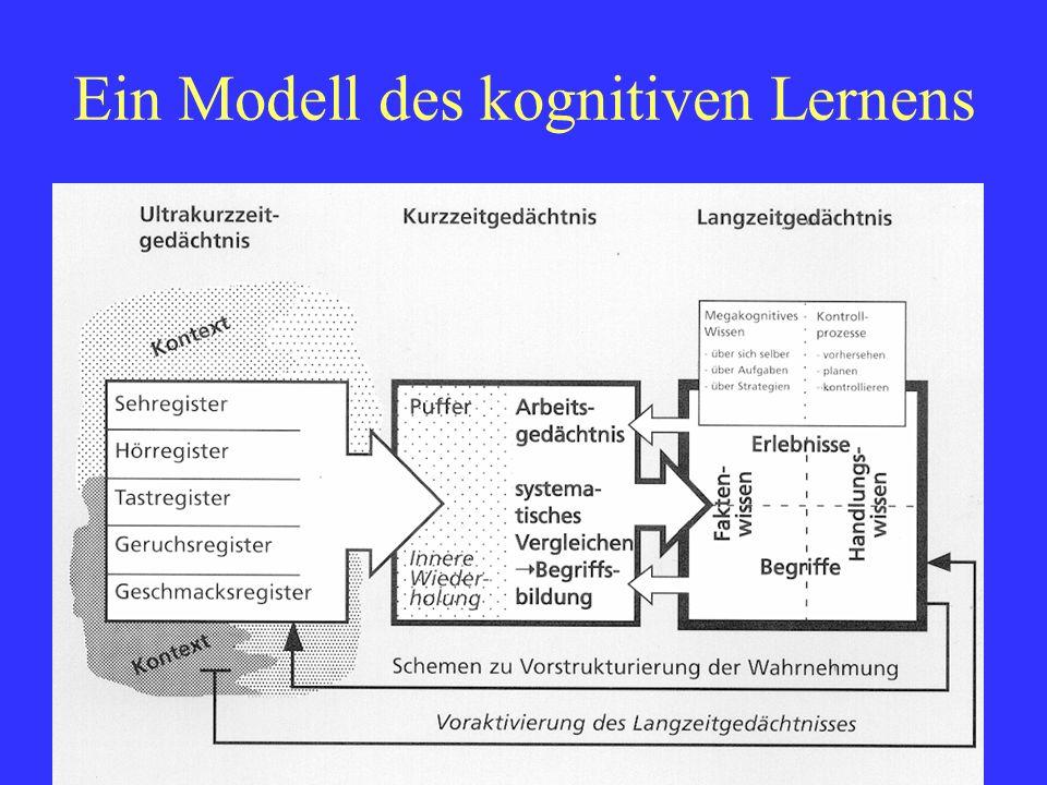 Ein Modell des kognitiven Lernens