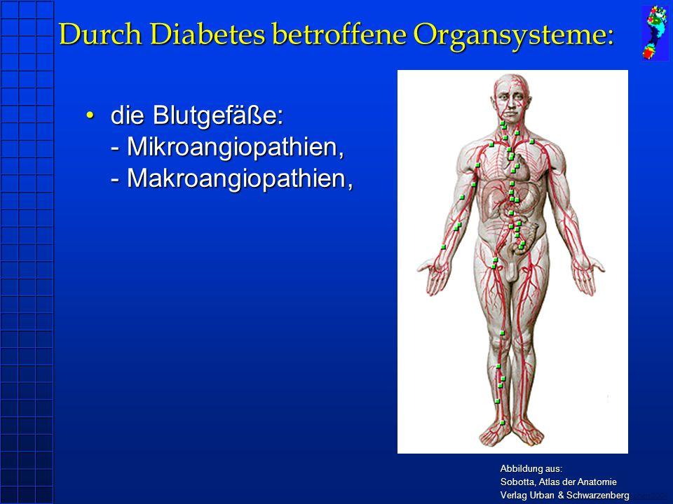 Durch Diabetes betroffene Organsysteme: